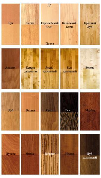 Разновидности пород дерева